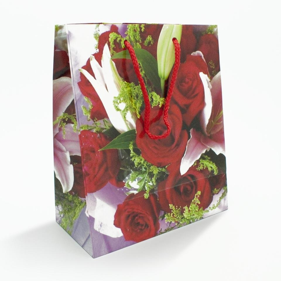 Gift wrapping - bag